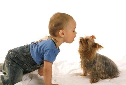 animal et enfant