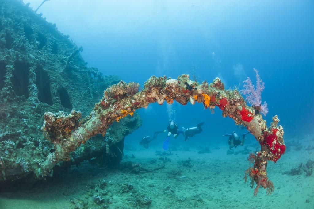 Plongée autour de l'épave du Zenobia