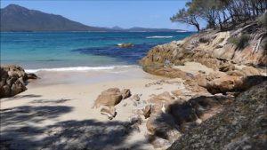 maria-island-tasmanie
