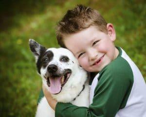 adoption-chien